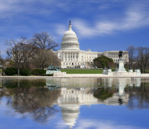 Washington DC Capitol building, where Arena helps our clients achieve their goals